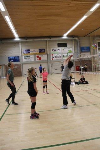 ffbd39fd0fad De Week van Alterno - Volleybalvereniging Alterno Apeldoorn